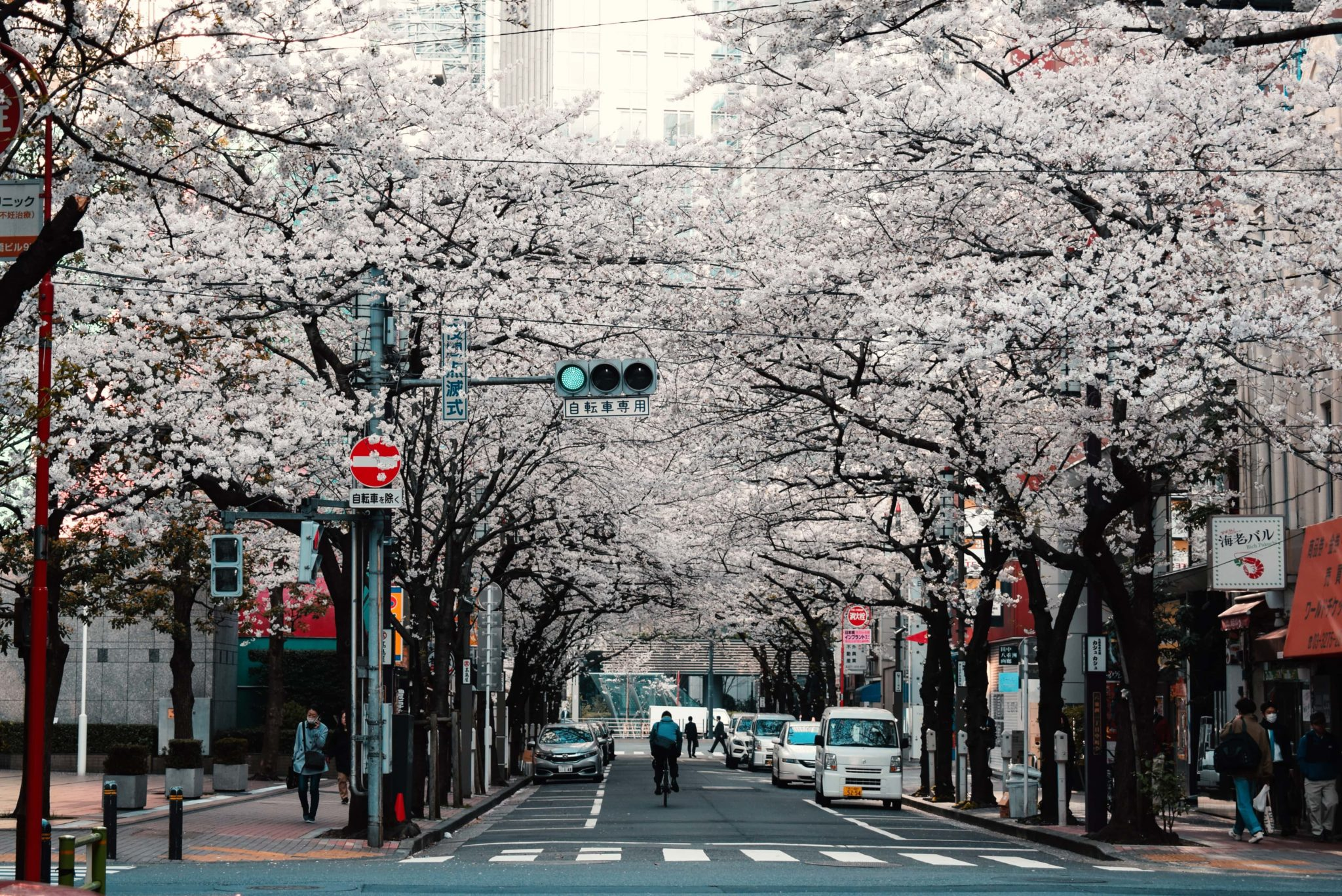 Cheap flights from Budapest to Tokyo for only 420€!